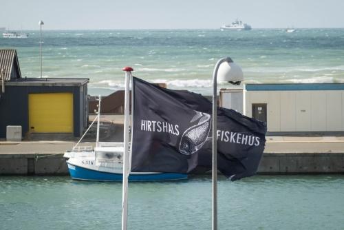 Hafen in Hirtshals in Dänemark