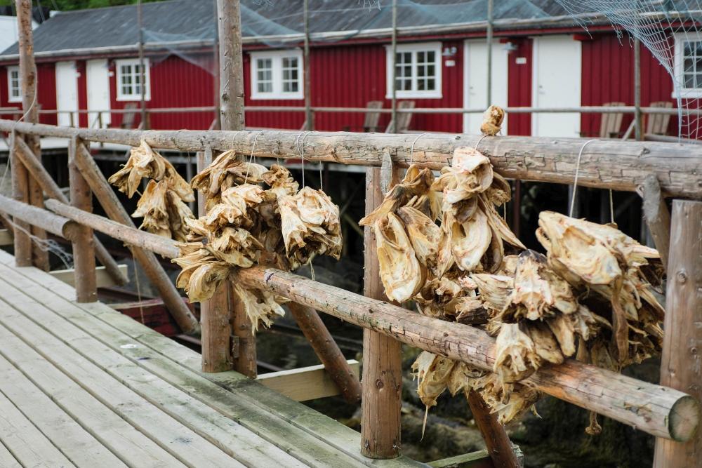 Nusfjord auf den Lofoten in Norwegen