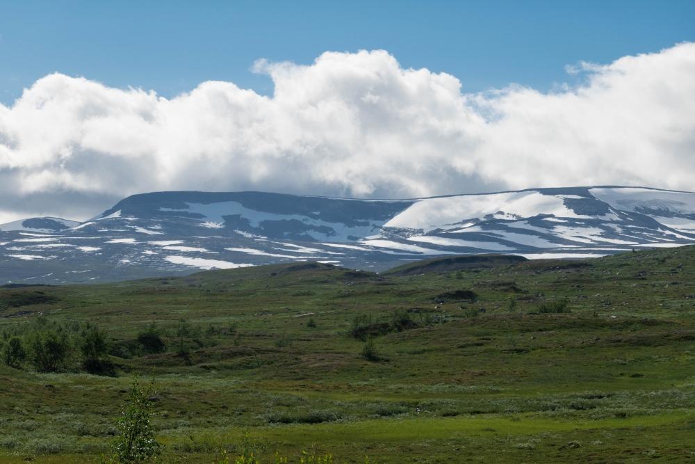 Saltfjellet-Svartisen-Nationalparks am Nördlichen Polarkreis in Nord-Norge in Norwegen