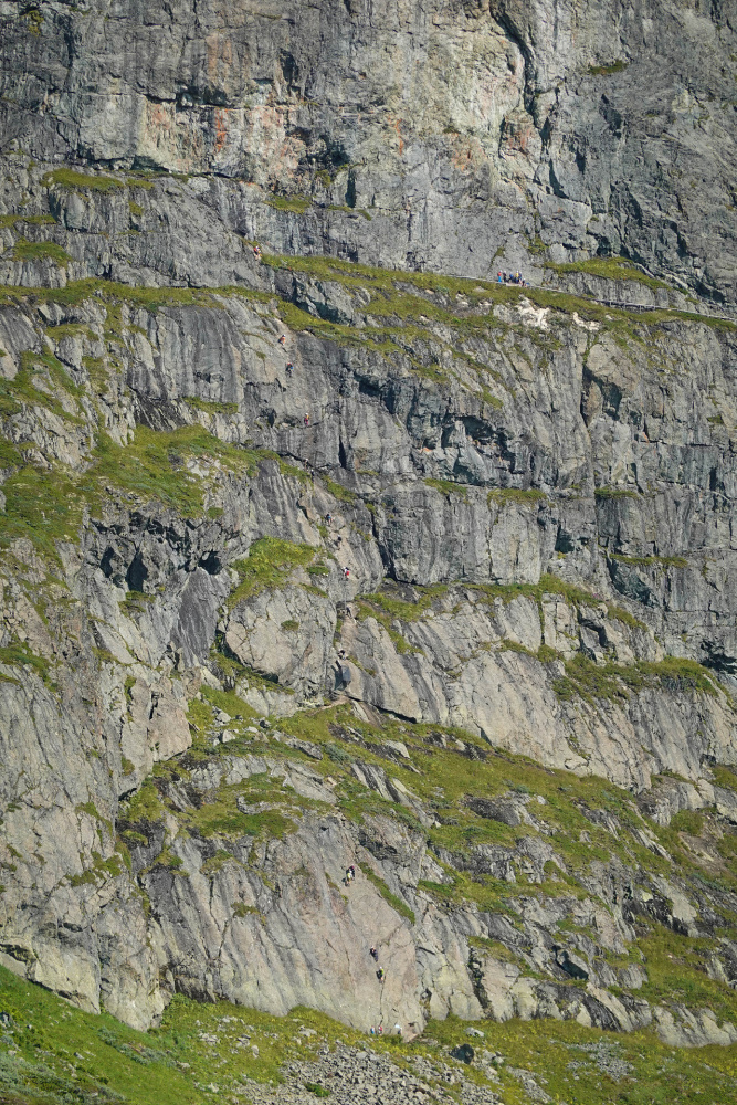 Synshorn am Bygdin-See im Østlandet in Norwegen