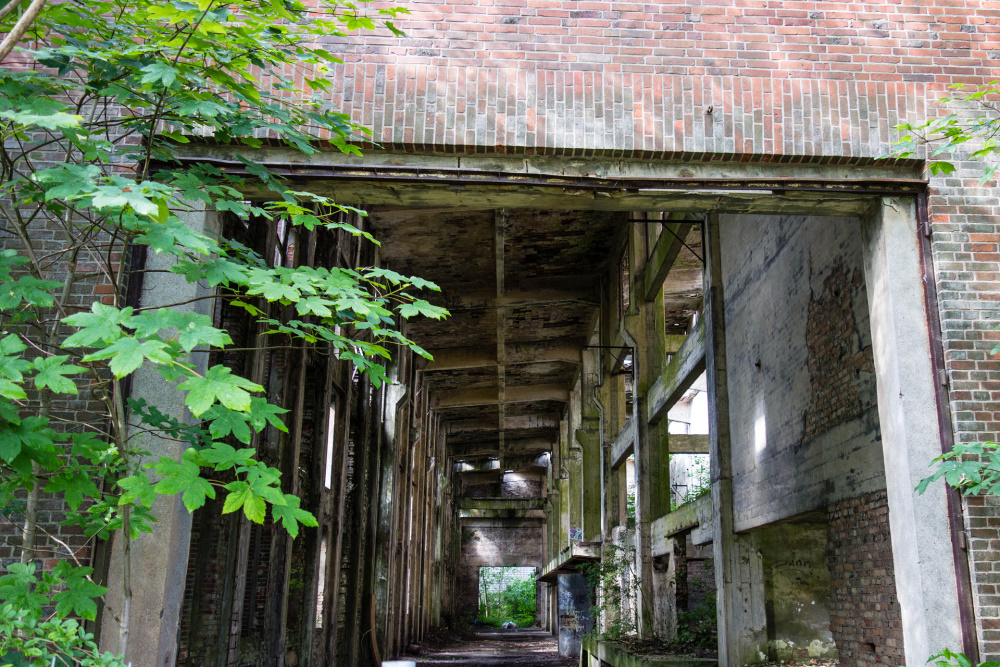 Ruine der Sauerstoff-Fabrik in Peenemünde / Insel Usedom