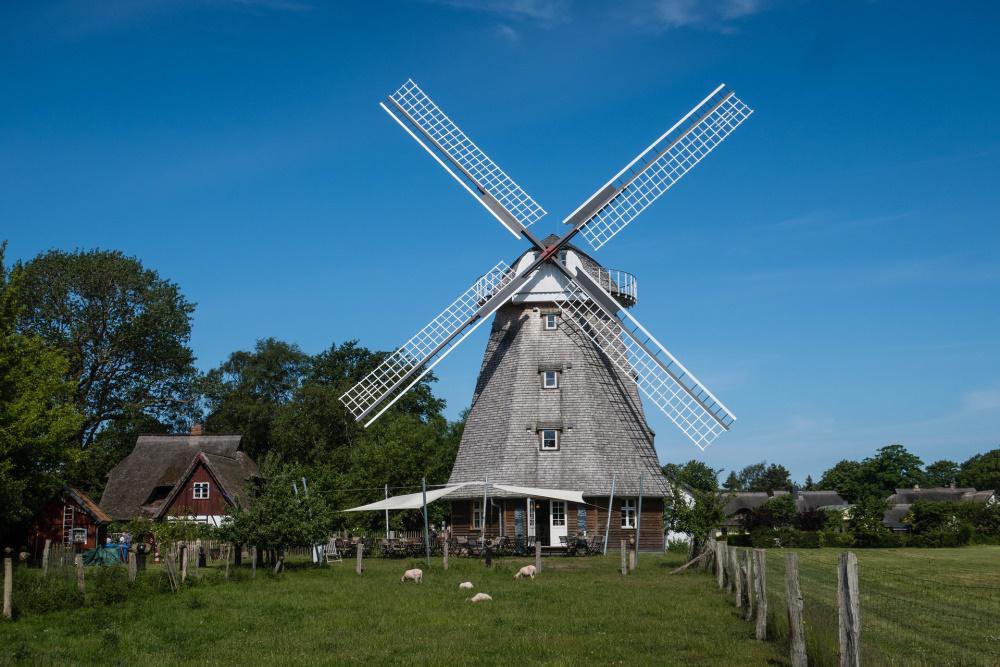 Mühle in Ahrenshoop / Fischland