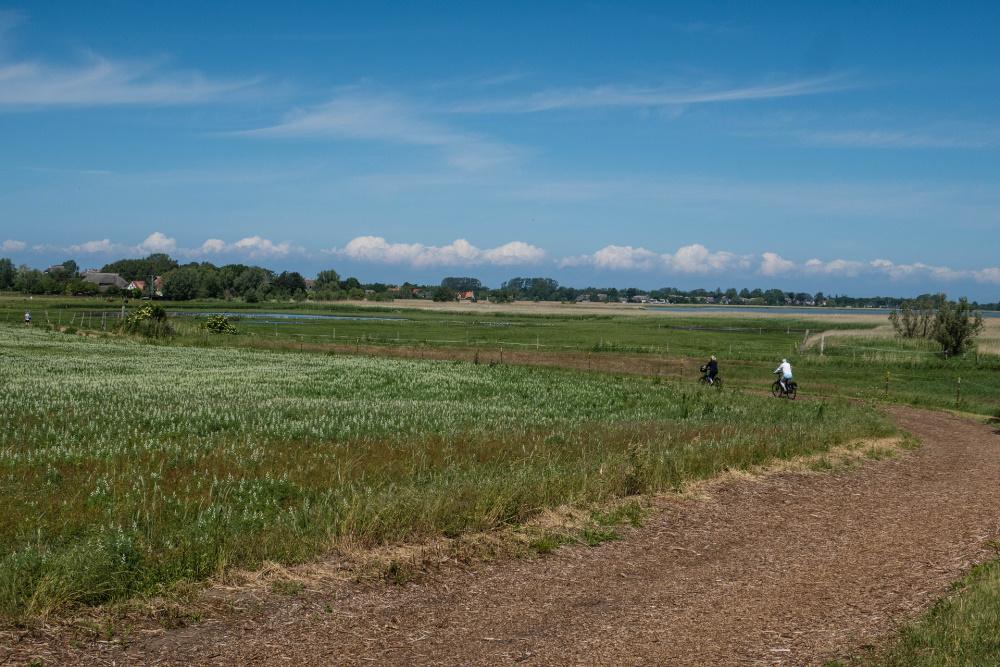 Boddenlandschaft zwischen Wustrow und Ahrenshoop