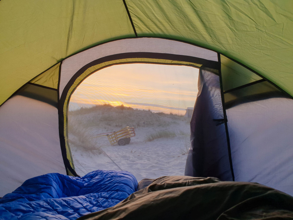 Blick aus dem Zelt in Prerows Dünenlandschaft / Darß