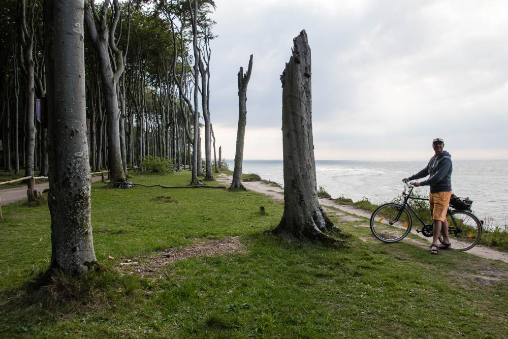 mit dem Fahrrad entlang der Steilküste des Nienhäger Gespensterwaldes