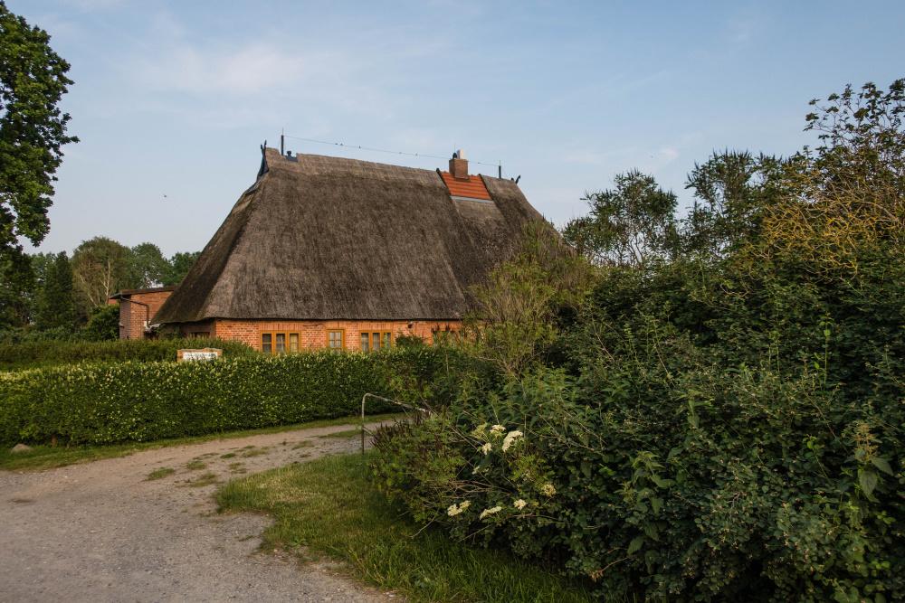 Lehmfachwerkhaus mit reetgedecktem Walmdach in Hoben