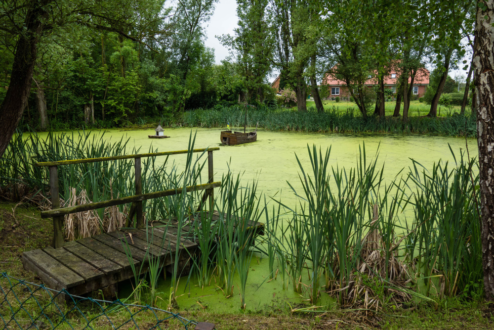 kleiner Teich inmitten der Insel Poel