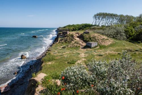 Steilküste auf Fischland-Darß-Zingst